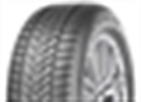 DUNLOP WINTER SPORT 5 SUV 5